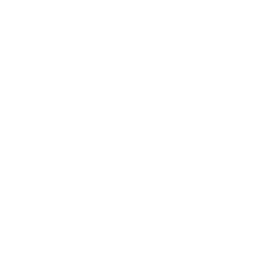 Hübner Management