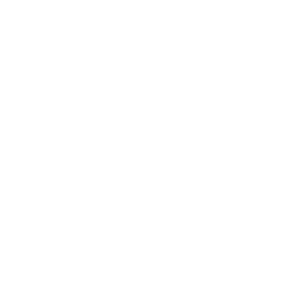 Hübner Management